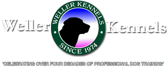 Weller Kennels Dog Training for Obedience and Retrievers